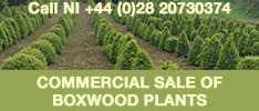 Boxwood Couple Retire - Business Opportunity